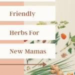 Breastfeeding herbs